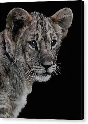 Lion Cub Portrait Canvas Print by Ernie Echols