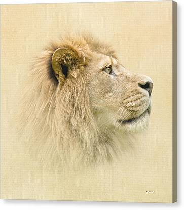 Canvas Print featuring the photograph Lion II by Roy  McPeak