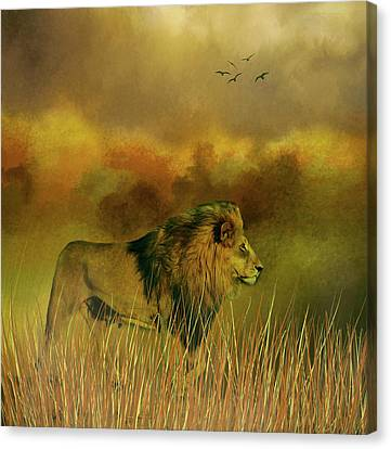 Lion In The Mist Canvas Print by Diane Schuster