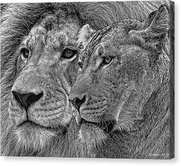 Lion King And Queen Canvas Print by Larry Linton