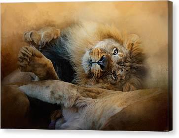Lion Love 2 Canvas Print by Jai Johnson