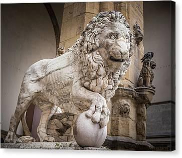 Lion On The Porch Canvas Print