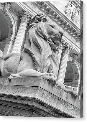 Lion Statue New York Public Library Canvas Print by Edward Fielding
