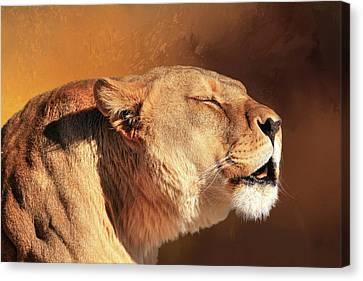 Lioness Canvas Print - Lion Talk by Donna Kennedy