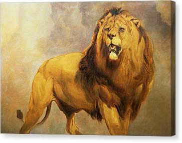 Lion  Canvas Print by William Huggins