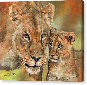 Lioness And Cub Canvas Print by David Stribbling