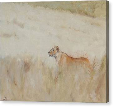Lioness - Scent Ahead Canvas Print by Ron Wilson