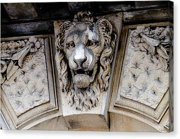 Lions Head Canvas Print by Tony Grider