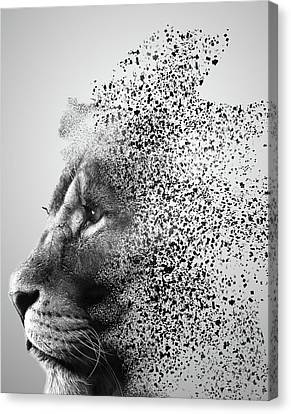 Human Head Canvas Print - Lions Mind by Martin Newman