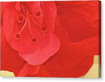 Canvas Print - Lipstick Red by James Temple