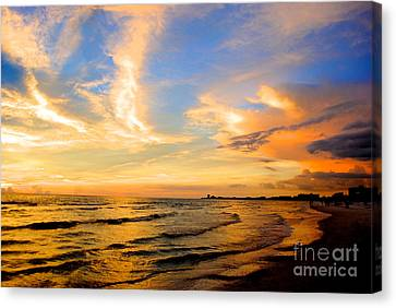 Liquid Gold Canvas Print by Margie Amberge