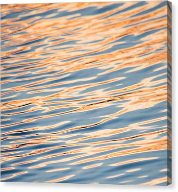 Liquid Gold Canvas Print by Parker Cunningham