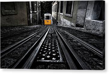 Lisbon Tram Canvas Print by Jorge Maia