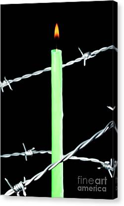 Lit Candle Surrounded By Barbed Wire Canvas Print by Sami Sarkis