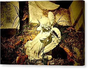 Little Angel Unaware Canvas Print