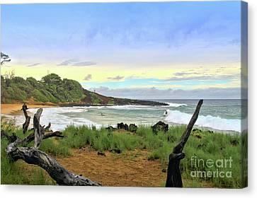 Canvas Print featuring the photograph Little Beach by DJ Florek