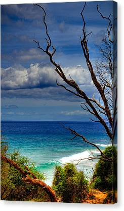Little Beach Maui Canvas Print by Kelly Wade