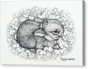 Little Big Ears Canvas Print by Tanja Ware