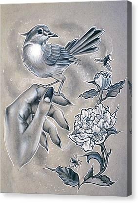 Little Bird Canvas Print by Amber Lamar