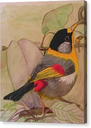 Little Bird Canvas Print by MGilroy