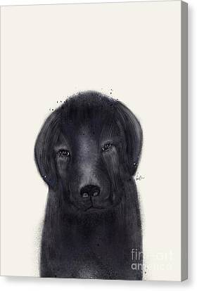 Canvas Print featuring the painting Little Black Labrador by Bri B