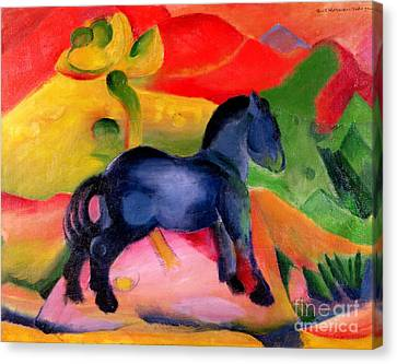 Little Blue Horse Canvas Print by Franz Marc