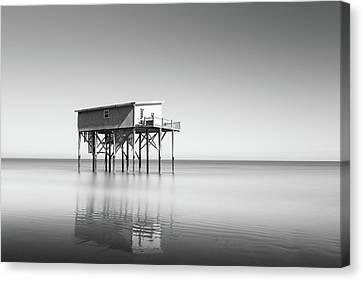Little Blue In Black And White Canvas Print