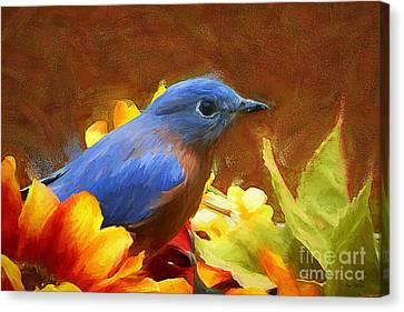 Little Boy Blue Canvas Print by Tina  LeCour