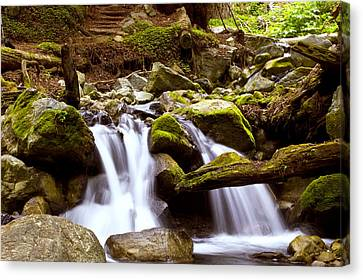 Canvas Print featuring the photograph Little Creek Falls by Gary Brandes