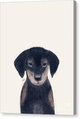 Canvas Print featuring the painting Little Dachshund by Bri B