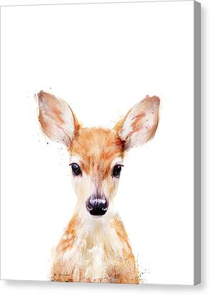 Fauna Canvas Print - Little Deer by Amy Hamilton