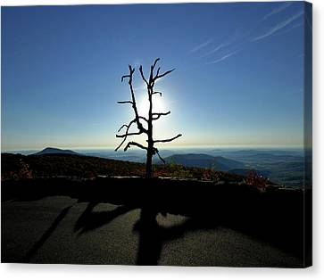 Canvas Print featuring the photograph Little Devil Stairs Overlook by Robert Geary