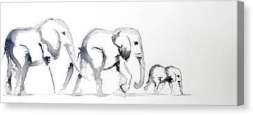 Little Elephant Family Canvas Print