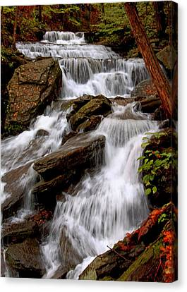 Canvas Print featuring the photograph Little Four Mile Run Falls by Suzanne Stout