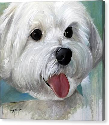 Little Gally Canvas Print by Mary Sparrow