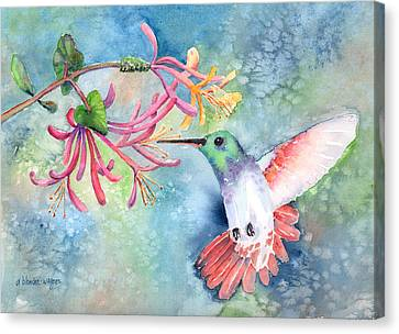 Humming Birds Canvas Print - Little Hummingbird by Arline Wagner