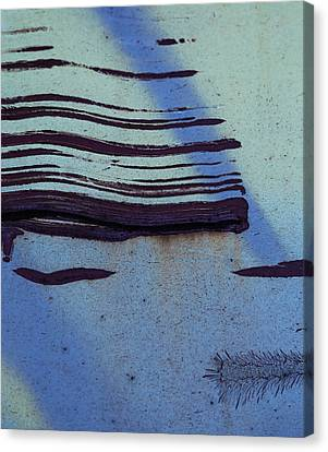 Little Incisions  Canvas Print by Empty Wall