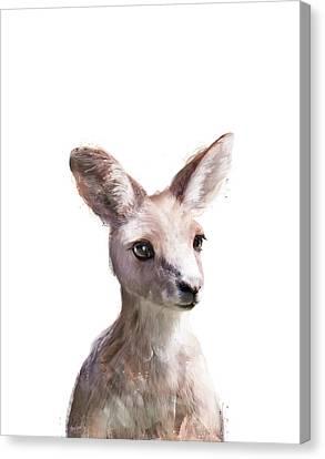 Kangaroo Canvas Print - Little Kangaroo by Amy Hamilton