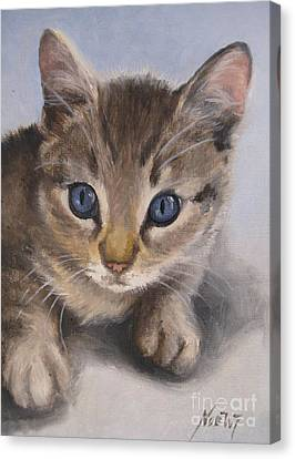 Canvas Print featuring the painting Little Kitty by Jindra Noewi