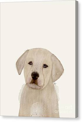 Canvas Print featuring the painting Little Labrador by Bri B