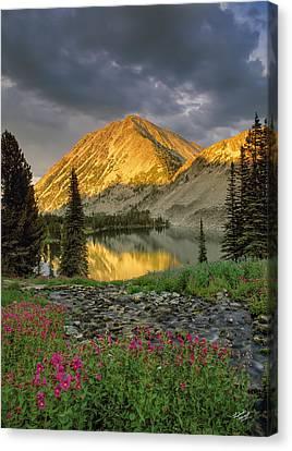 Splendor Canvas Print - Little Lake by Leland D Howard