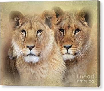 Cheetah Canvas Print - Little Lions by Trudi Simmonds