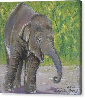Little Luk Chai Canvas Print by Louise Green