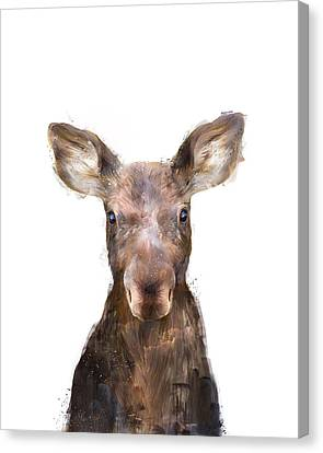 Fauna Canvas Print - Little Moose by Amy Hamilton