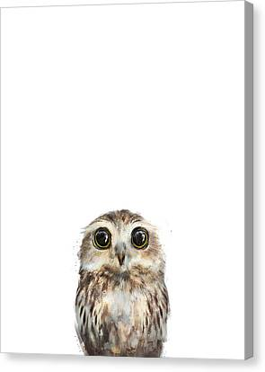 Fauna Canvas Print - Little Owl by Amy Hamilton