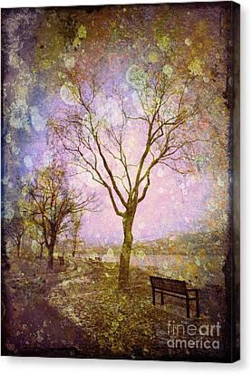 Little Pathways Canvas Print by Tara Turner