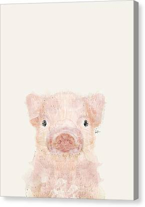 Little Pig Canvas Print by Bri B