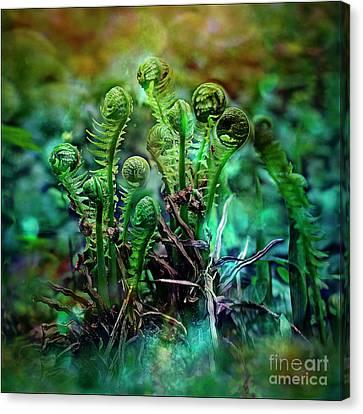 Little Planet Canvas Print by Agnieszka Mlicka