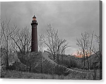 Little Point Sable Light Canvas Print