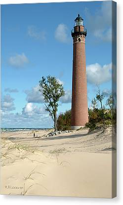 Little Point Sable Light Canvas Print by Michael Flood